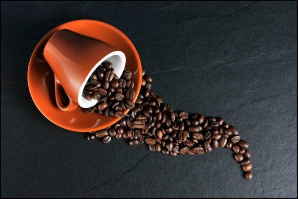 café renversé graine tasse zoom