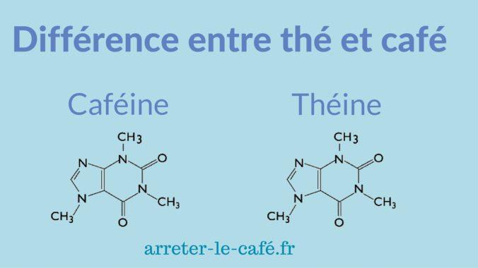 théine caféine molécule scientifique identique